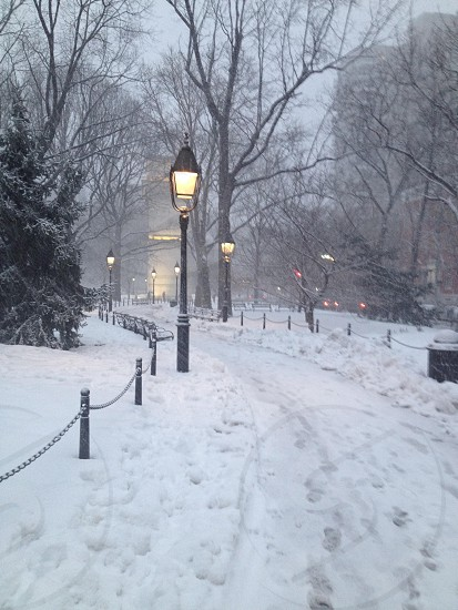Washington Square Park NY photo