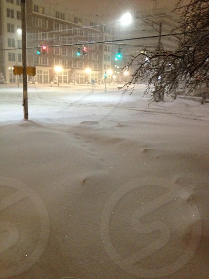 Winter Of 2013 photo
