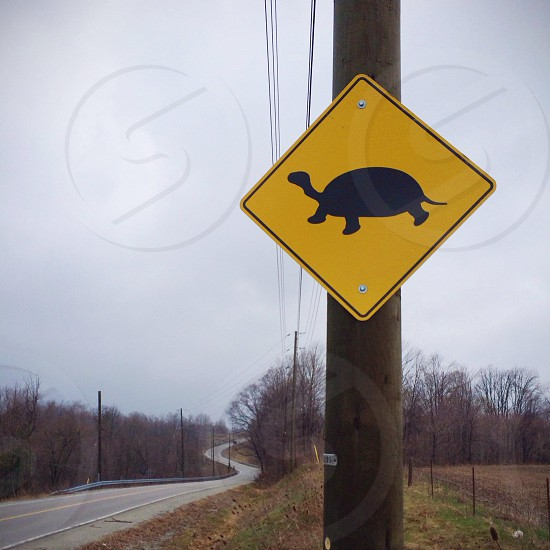 yellow and black turtle  sign photo