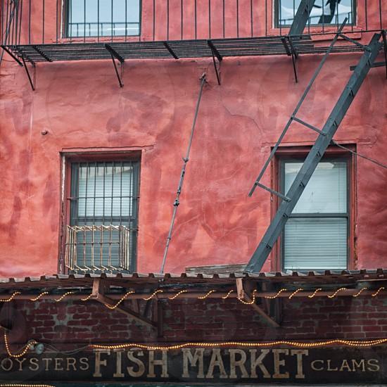 fish market clams store photo