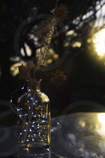Christmas decoration: glass bottle with flowers and white lights photo