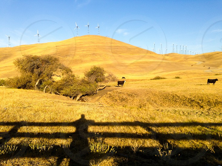 Shadow fence in countryside photo