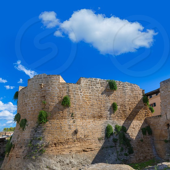 Alcudia Old Town fortress wall in Majorca Mallorca Balearic island of Spain photo