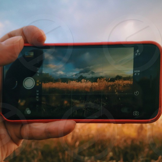 person taking picture of wheat field with a cell phone photo