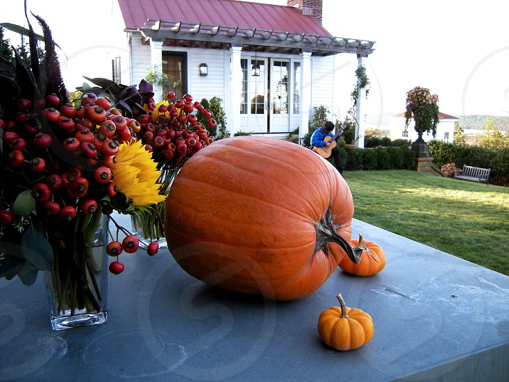 Pumpkins at farm to table dinner photo