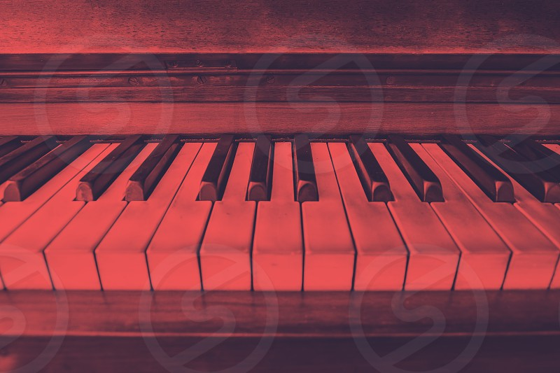 close-up view of the keys of a ancient ruined piano photo