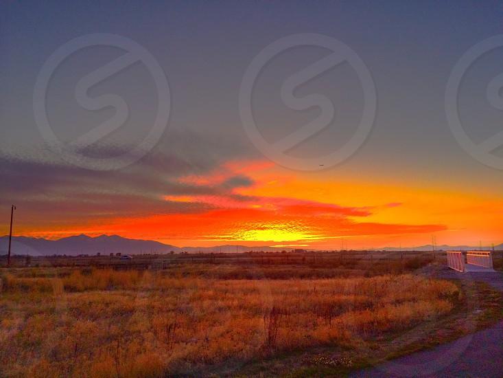 Sunset field grass  photo