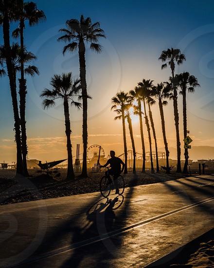 Santa Monica beach sunset silhouette bike rider photo