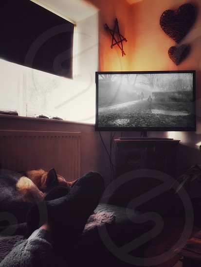 person laying down on bed facing television photo