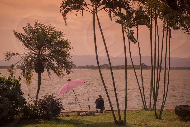 a fisherman at the lake of Kwan Phayao in the city of Phayao in North Thailand. photo