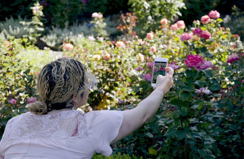 Woman taking photos with phone in rose garden sharing on Social Media photo