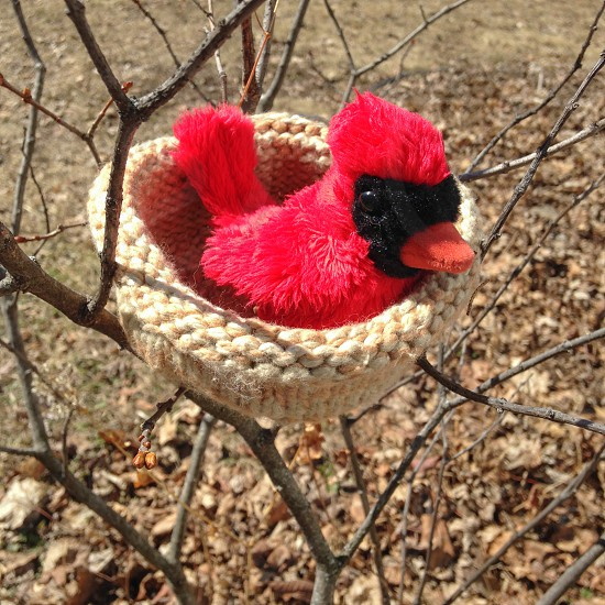 A hand knit bird nest to be used at an wildlife rescue center for baby birds. photo