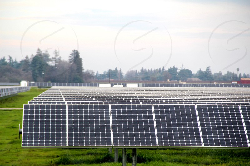 Solar panels in a field industrial scale solar power photo