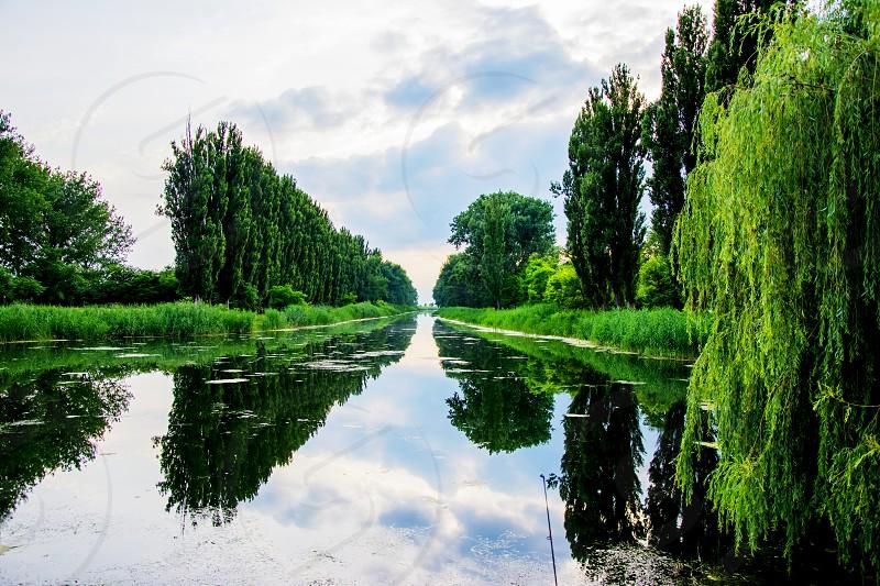 Untouched nature in Mali StaparVojvodinaSerbia. photo