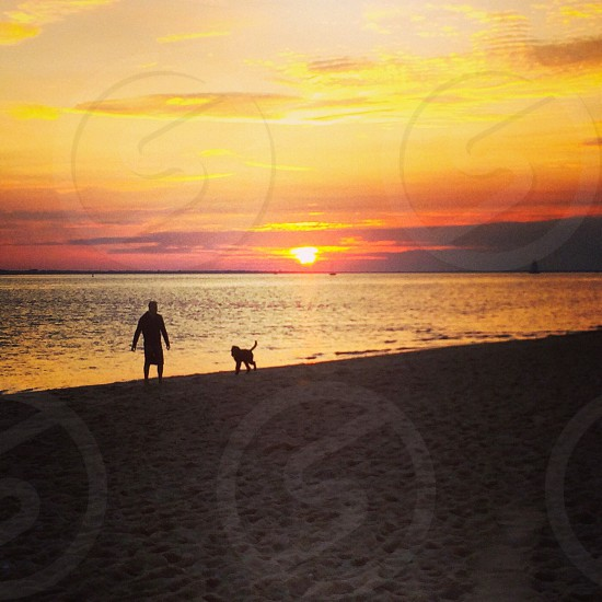 man and dog on sand near ocean photo