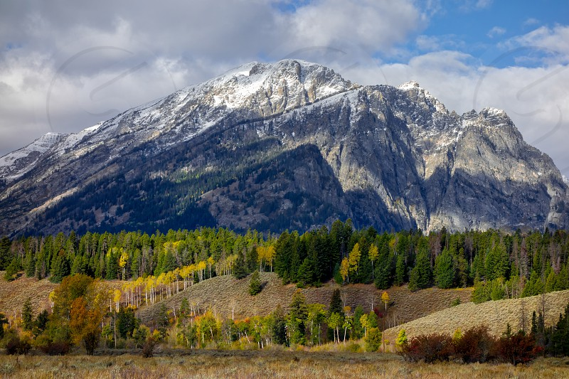 Autumn Colours in Wyoming photo