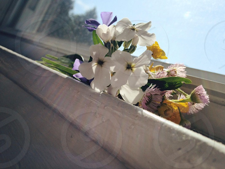 white and pink flower bouquet on white window ledge photo
