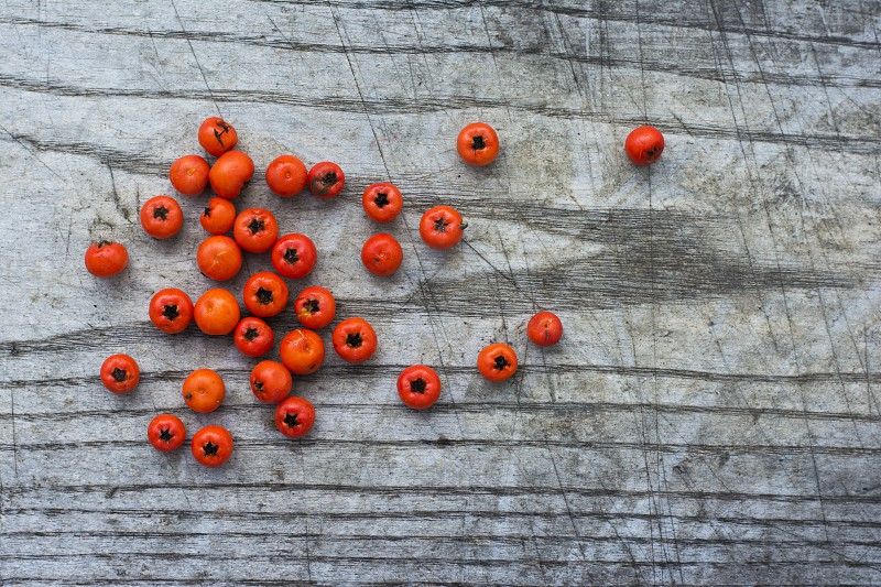 Small orange wild fruits fallen on wooden background. Shot in small town of Sombor in northern Serbia. photo