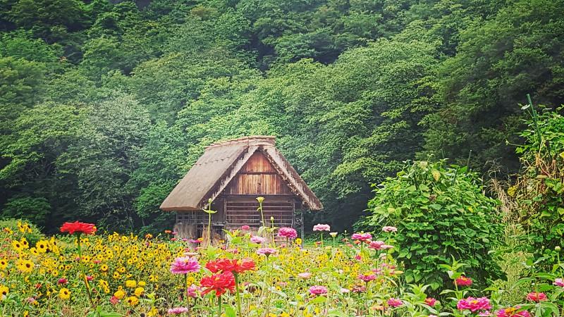 Japan ShirakawaGo photo