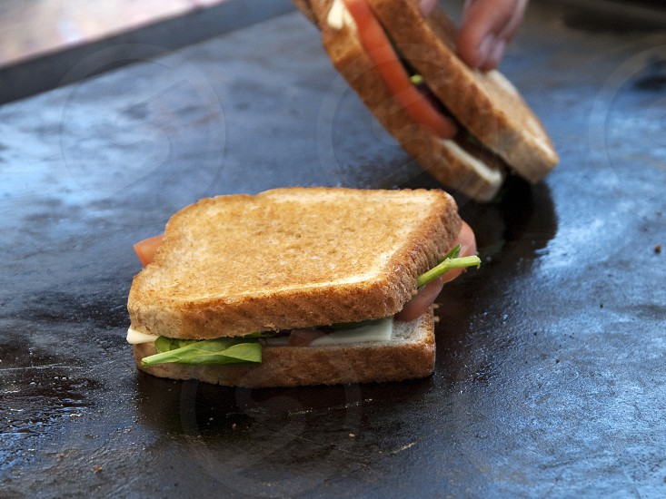 Grilled cheese and veggie sandwiches on large griddle surface photo