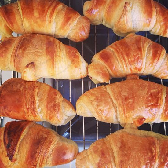 8 brown bread photo