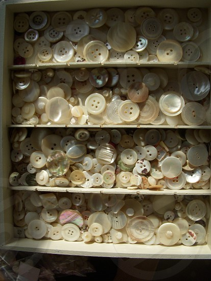 Mother of pearl buttons photo