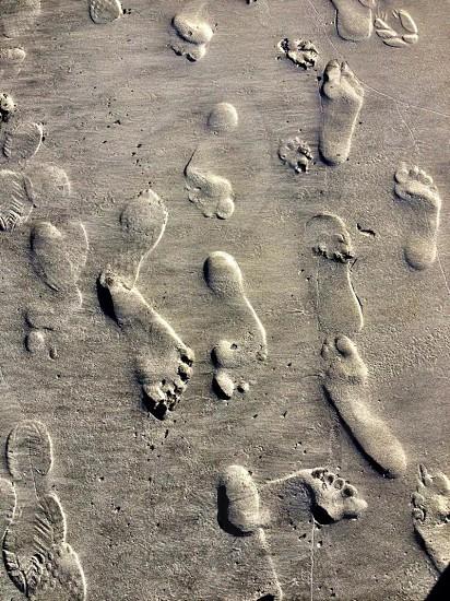 imprints on the sand photo