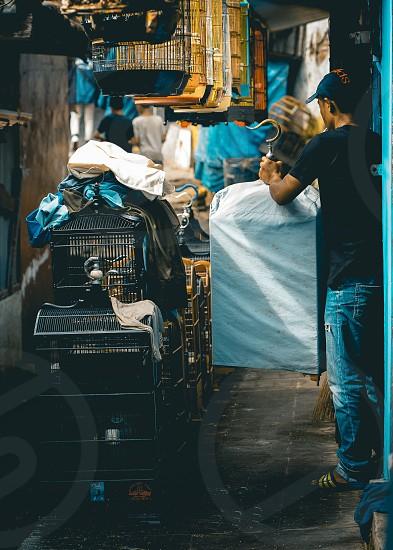 Pasar Burung Splendid photo