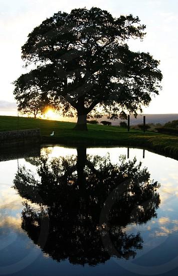 Pen-Y-Glog Farm photo