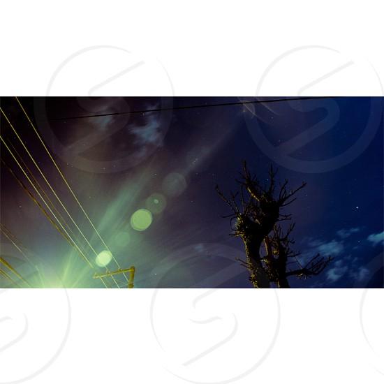 #flare #fractal #sky #stars #cloud #tree #night photo