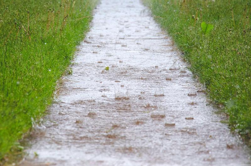 wet sidewalk photo