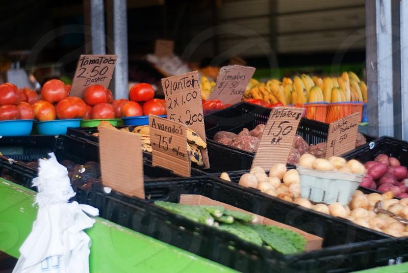 farmer's market tomatoes nopales avocado banana plantain  photo