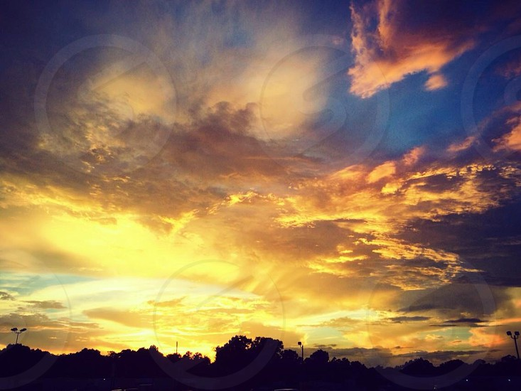 Golden Sunset  photo