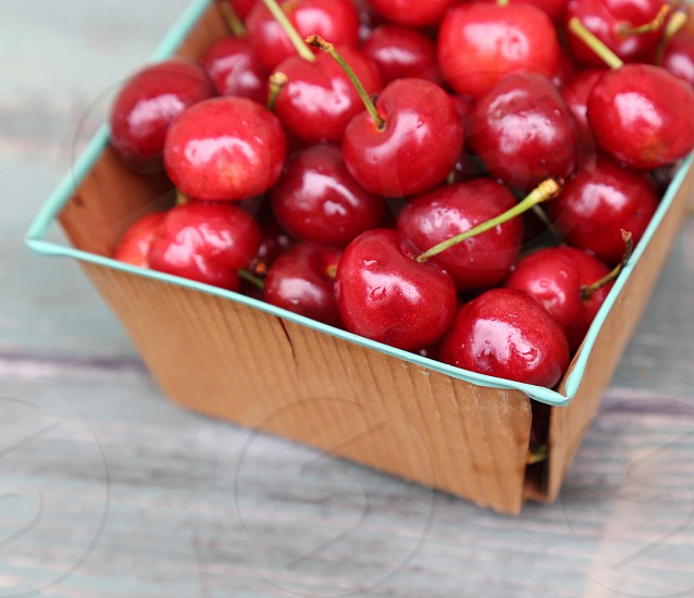 A Pint Of Fresh Picked Cherries photo