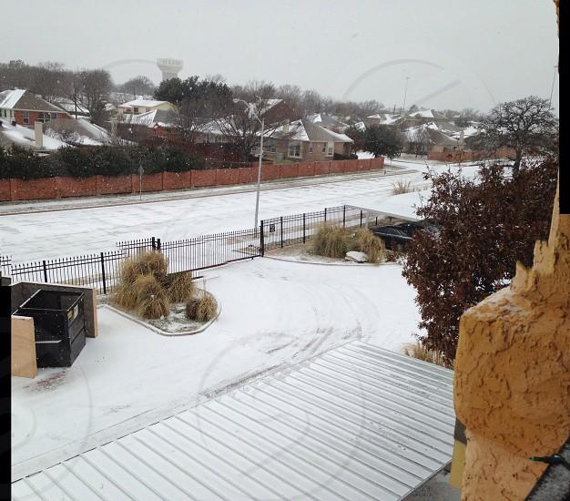 Snow Day in Dfw  photo