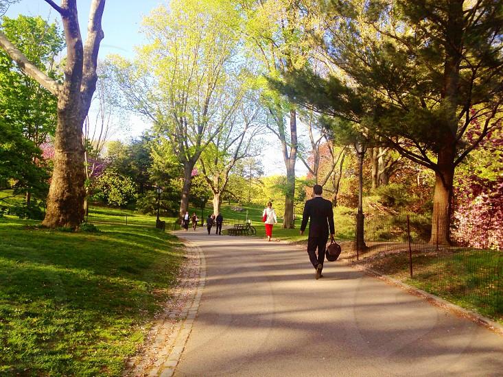 Central Park. photo