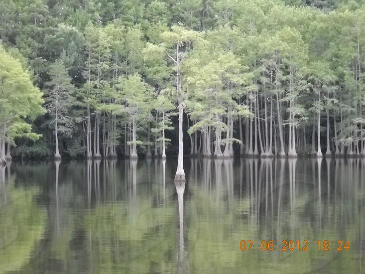 Mazerick Park photo