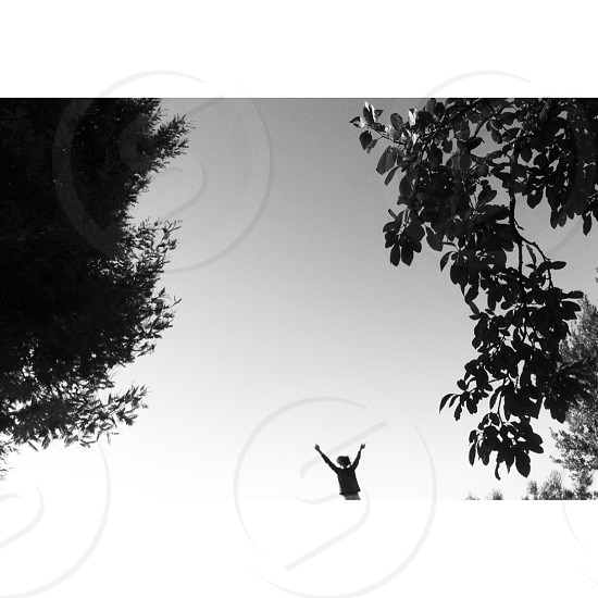 silhouette photography of person raising hands in between of two trees photo