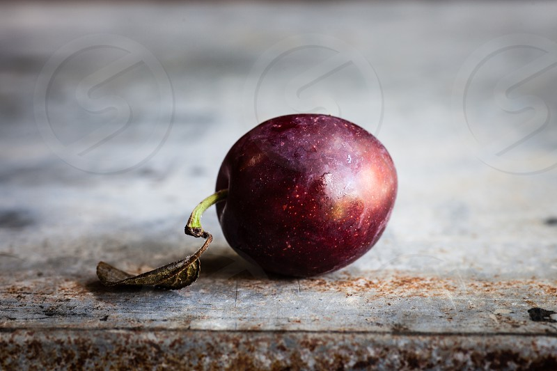 single plum on rustic background photo