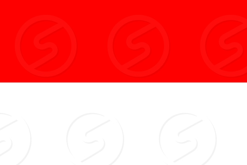Official Large Flat Flag of Indonesia Horizontal photo