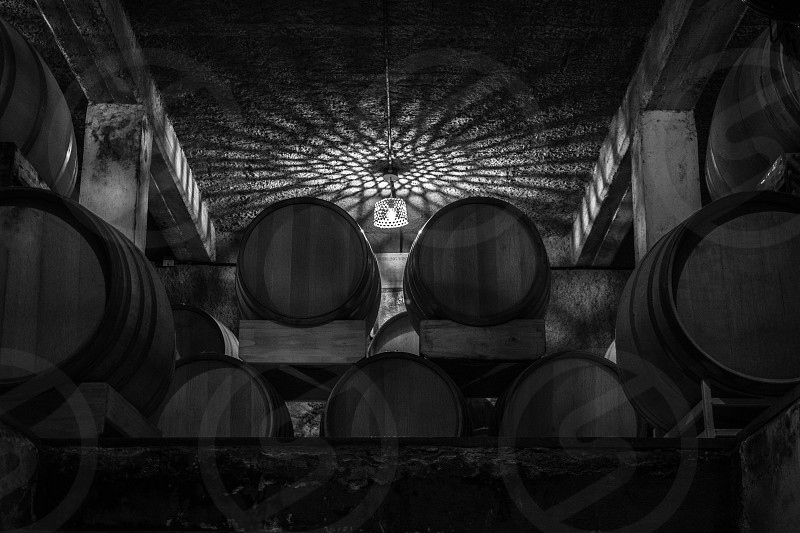 oak barrels photo