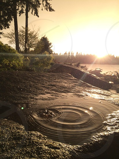 Rain sun drop life perfect moment golden hour joy sun beams rays water shimmer lake residence  photo