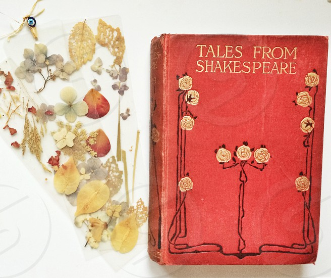 tales from shakespeare book photo
