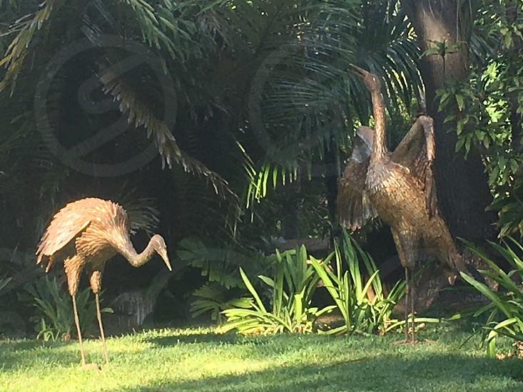 Statues at the Honolulu zoo  photo