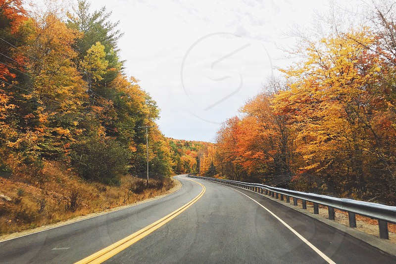 Mountain road Maine fall colors  photo