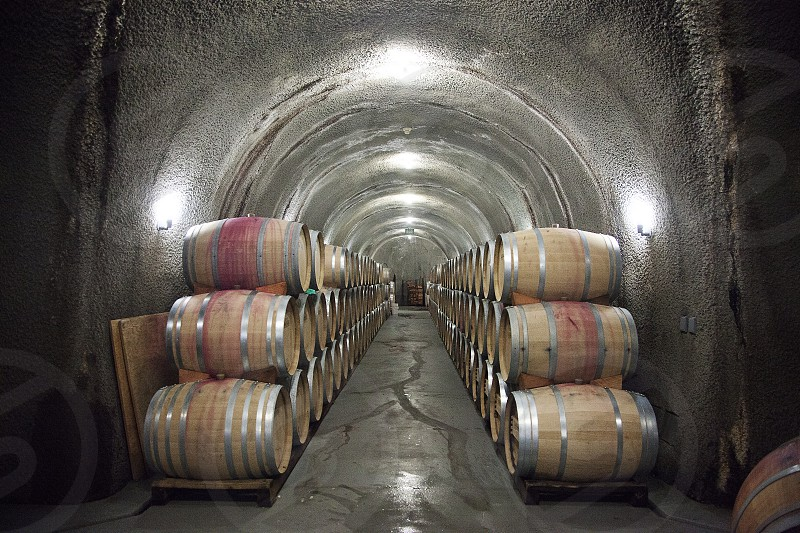 Inside a Napa Valley wine cellar during a private wine tour in the region photo
