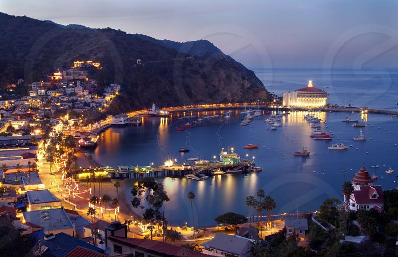 catalina island avalon evening christmas vacation travel harbor pier ocean photo