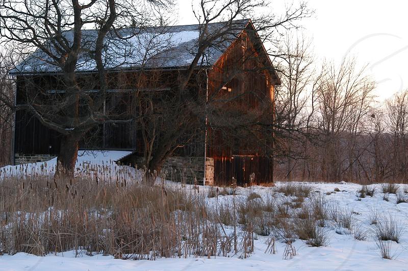Barn. Winter. Sunrise. photo