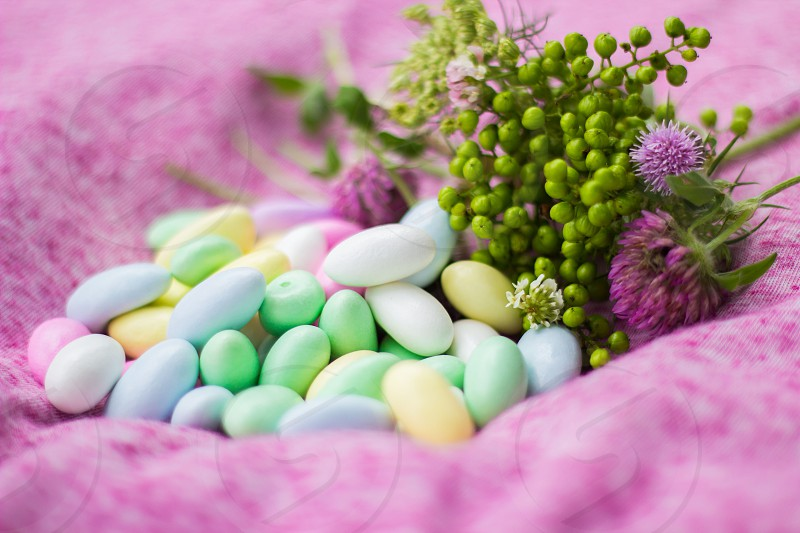 white teal and green pills with green small fruits photo