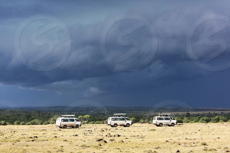 Traveling Safari  Africa  wild planet tour nature photo